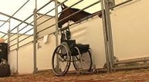 Reit-DM mit Handicap