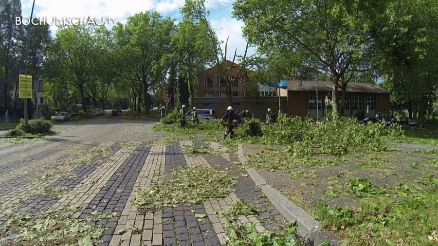 Sturm in Bochum verwüstet ganze Straßenzüge.